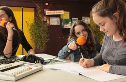 Atelier webradio avec les jeunes du Centre Social et Culturel l'Estey – Bègles : 2015-2016